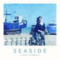 ブリティッシュ・ジャズ・シンガー、海にまつわるスタンダード! CD LIANE CARROLL リアン・キャロル / SEASIDE