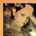 180g重量盤LP NORAH JONES ノラ・ジョーンズ / DAY BREAKS