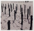 CD   HELGE LIEN TRIO  ヘルゲ・リエン  /  TO THE LITTLE RADIO  トゥー・ザ・リトル・ラジオ