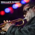 ストレート・アヘッド・ジャズ! CD WALLACE RONEY ウォレス・ルーニー / UNDERSTANDING