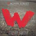女性ヴォーカルも妖艶に映えるクール&インティメイトな洒落た寛ぎ世界♪ CD VOICE OF STRINGS WITH ALY & Z JAZZ-MEN / WAGNER STREET -crossing with jazz- (送料込み価格設定商品)