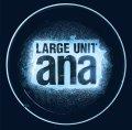旨味あるソロとスリリングな展開でピリッと高揚させる現代フリー会心打! CD LARGE UNIT / ANA