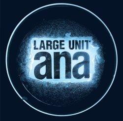 Large Unit / Ana