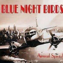 画像1: 隠れヴォーカル名盤の限定復刻 CD Blue Night Birds feat. Christelle Pereira / Airmail Special