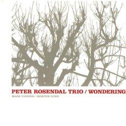 画像1: CD   PETER ROSENDAL ピーター・ローゼンダール   /   WONDERING