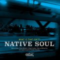 【CELLAR LIVE】CD Native Soul / What Is That Isn't?