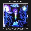 【現ジャズ・シーンへと繋がるBAG関連作品によるFreedom復刻第2弾!】CD OLIVER LAKE オリヴァー・レイク  / NTU:創造の起点