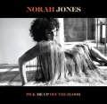 180g重量盤LP NORAH JONES ノラ・ジョーンズ / PCIK ME UP OFF THE FLOOR