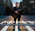 〔SMOKE SESSION〕CD  PETER BERNSTEIN  ピーター・バーンスタイン / What Comes Next