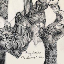 画像1: 【日本先行発売】CD Becca Stevens   ベッカ・スティーヴンス  /   Becca Stevens & The Secret Trio   ベッカ・スティーヴンス&ザ・シークレット・トリオ