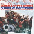 CD EKREM & GYPSY GROOVZ WITH DUSKO GOYKOVICH エクレム&ジプシー・グルーヴス・ウィズ・ダスコ・ゴイコヴィッチ /  リヴァース・オブ・ハピネス